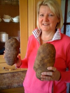 'Huge Agri potatoes – can anyone better these?'